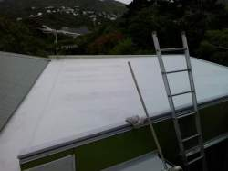 entire roof primed with hydroepoxy (or formstick) primer