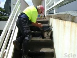 more step repairs