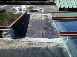two seam between the skylights require replacement