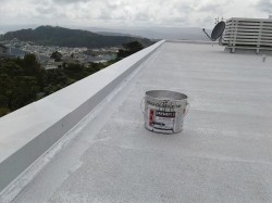 a week later, 2nd coat to parapets and coving view to east