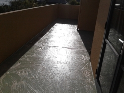 entire deck is washed with ExPlus degreaser